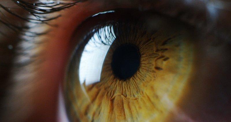 Eyes Need