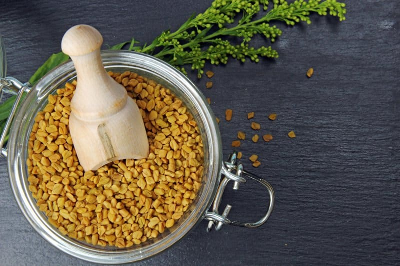 Why should you use fenugreek? Well, it is known to aid in breaking down fat, increase sugar metabolism in the body, improve overall metabolic rate, suppress cravings, and reduce calorie consumption.