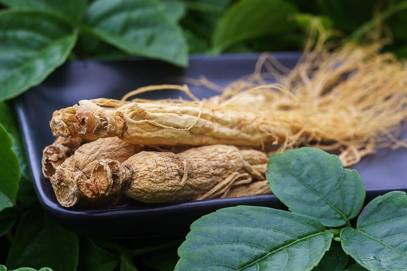 Ginseng weight loss regimens also work best with regular exercise to maximize its benefits.