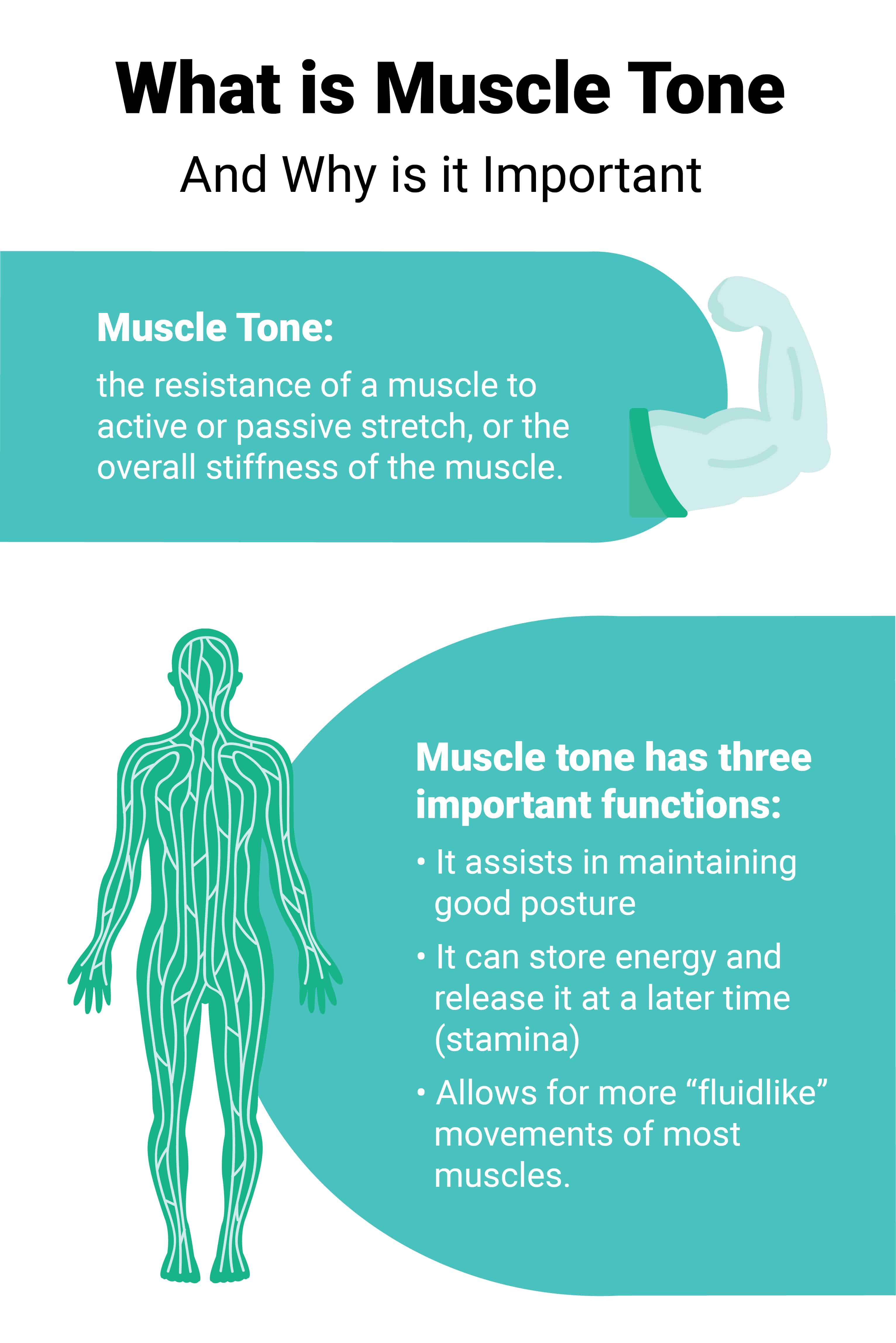 What is Muscle Tone and Why it's Important.