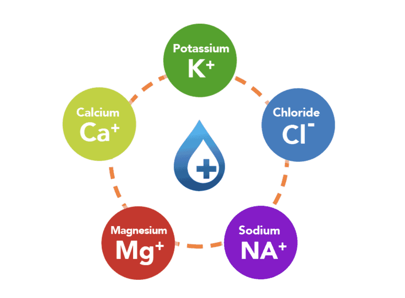 There are 5 key sources of electrolytes