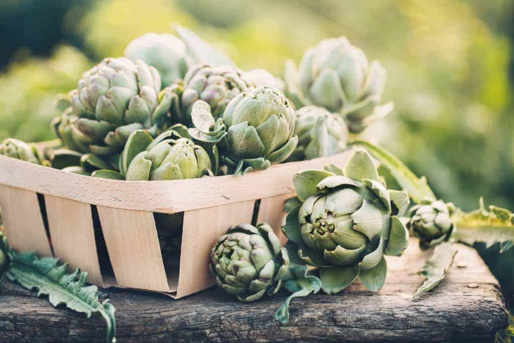 artichoke health benefits