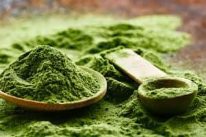 Best Greens Powders in 2020