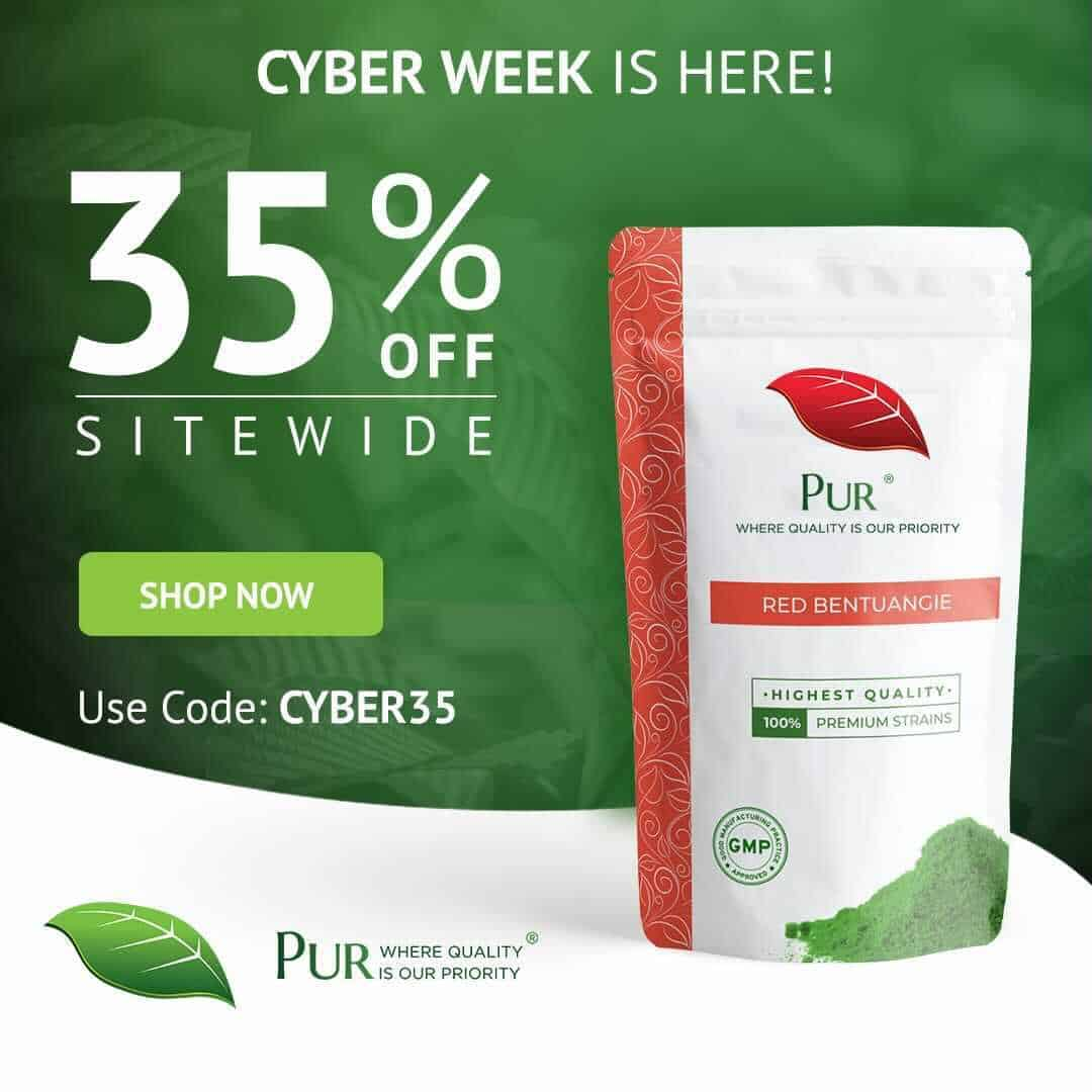 PUR Cyber Week Event: Enjoy Ten Days of Black Friday Savings 1