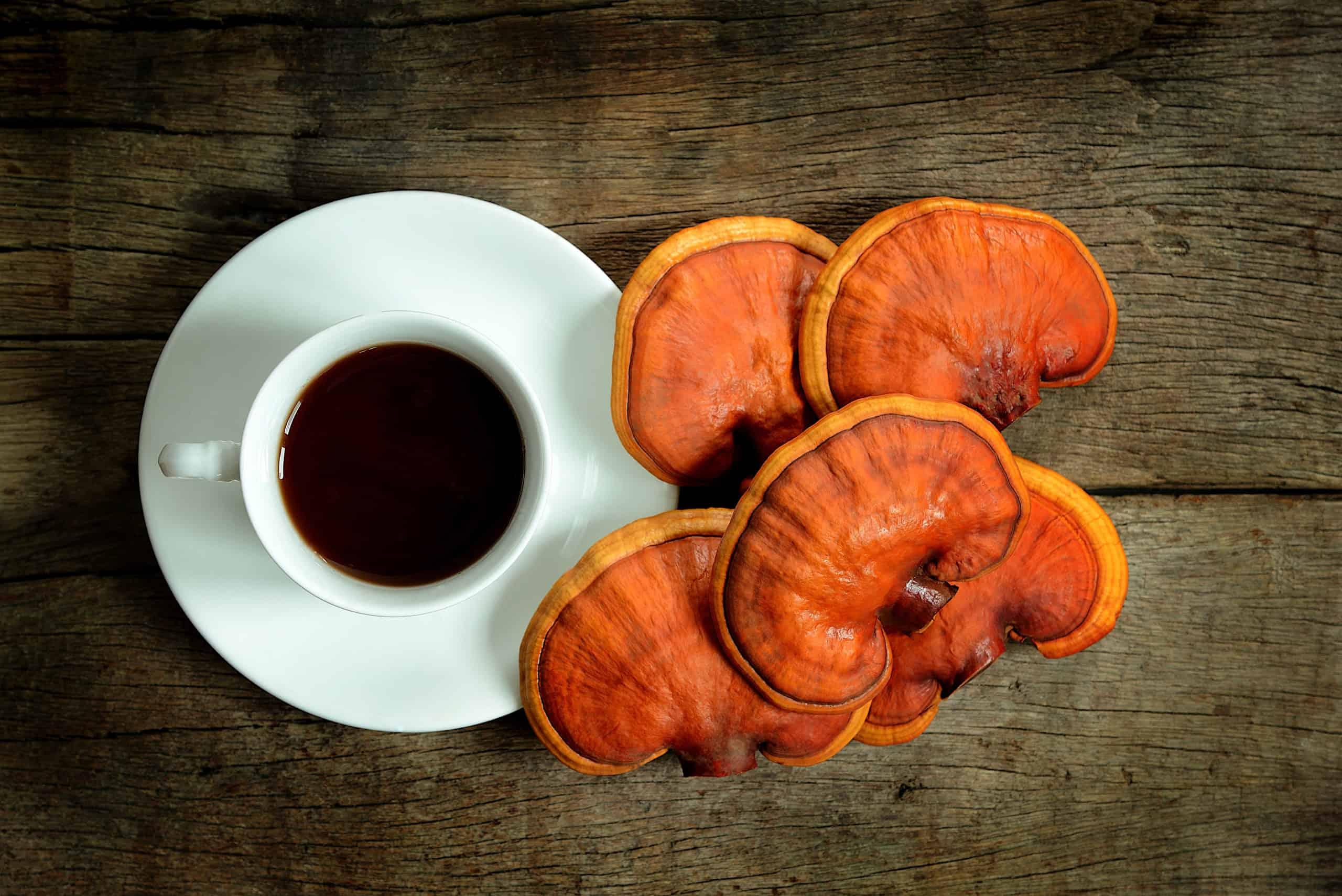 mushroom tea